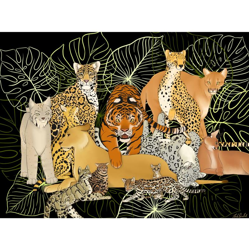 An illustration of 13 species of big cats and wild cats against a black background and palm leaves.