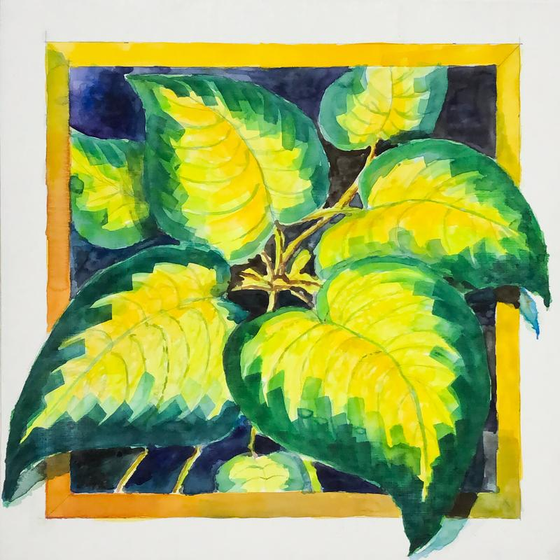 It is a watercolor of a Paul's Glory Hosta