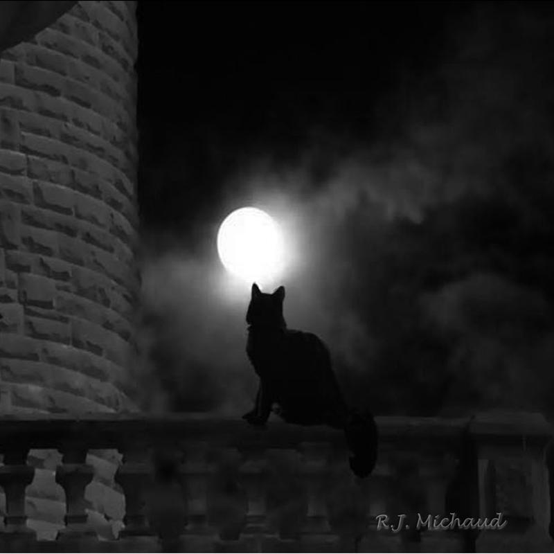 Monochromatic white, black and gray digital illustration of a black cat on stone railing of castle in the the light of a midnight full moon.