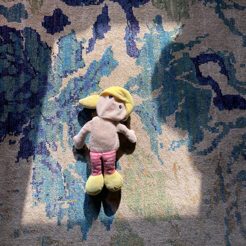 A photograph of a dog toy that that has has been partly ate by my dog Mickey in the light coming through the window.