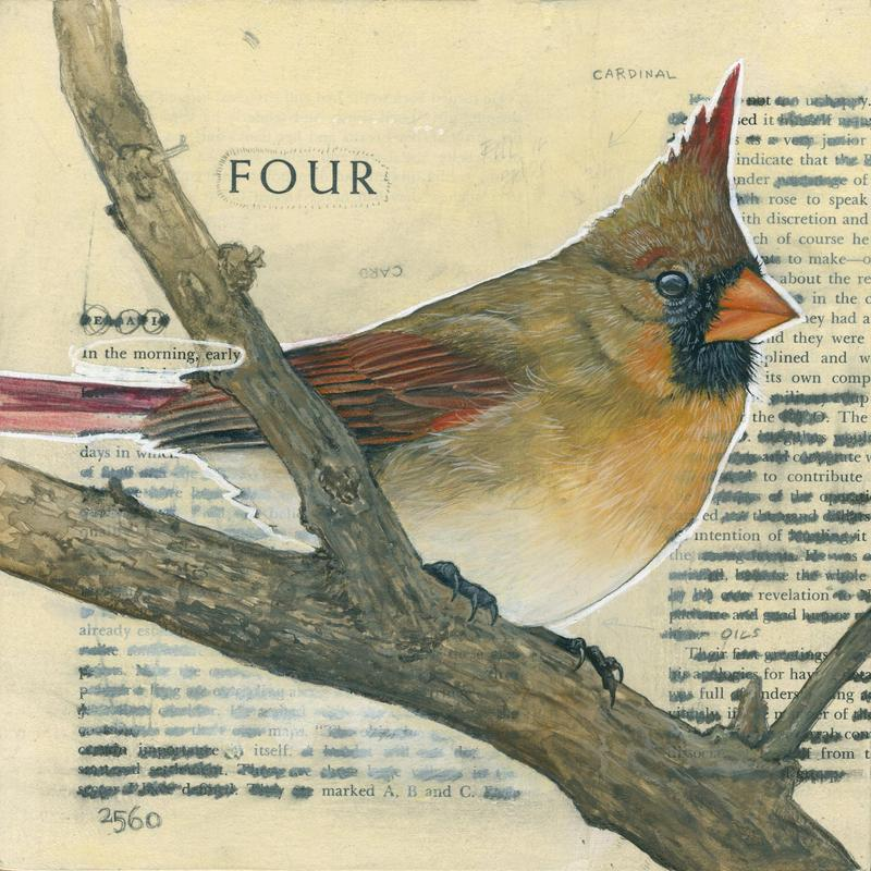 A female cardinal contrasted against redacted book pages