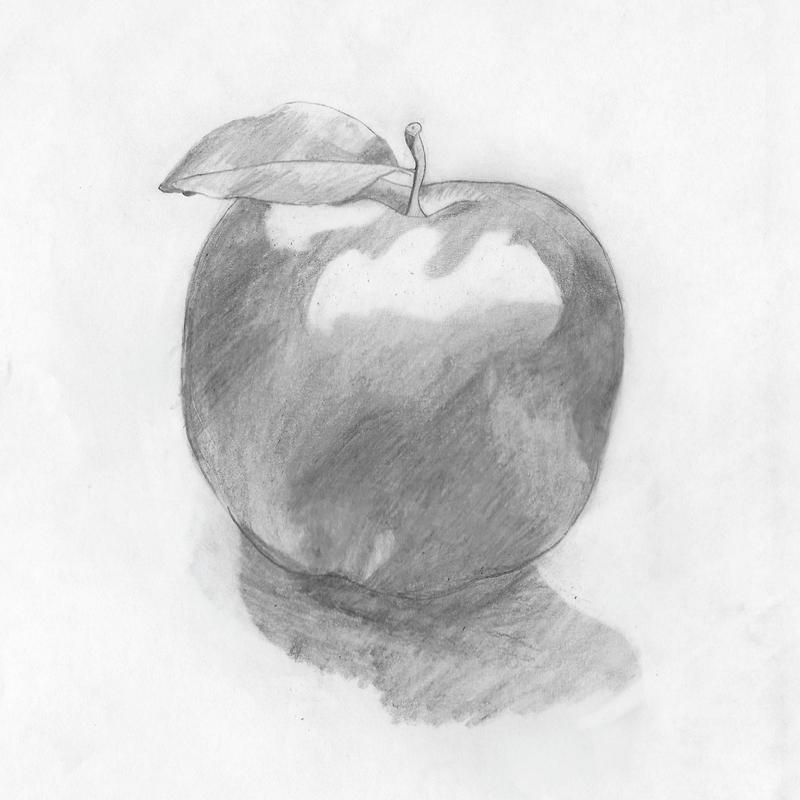 A pencil drawing of an apple by a nine year old artist.