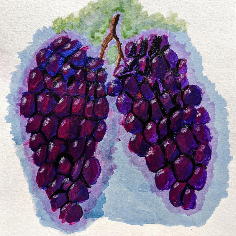 A colorful painting of two, deep purple clusters of grapes hanging on a vine reflecting the sunlight.