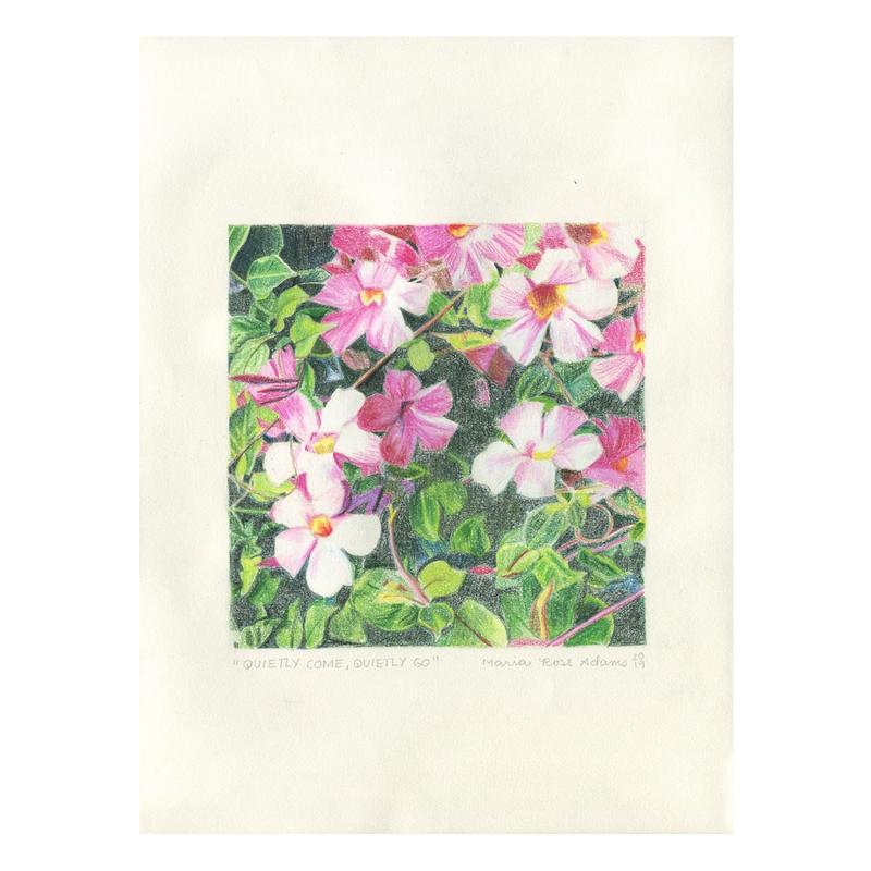A colored pencil drawing of pink blooms amidst green leaves and dark green shadows.