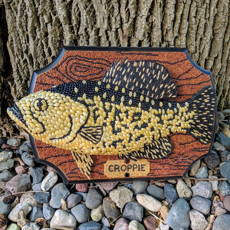A former Big Mouth Billy Bass is transformed into a 3-dimensional false wooden plaque with wood grain made of actual grains (quinoa) and a mounted crappie fish, also made of crops in the distinctive black and yellow pattern of a crappie fish (corn, wild rice, canola, and other seeds and grains). Former bass fins have been replaced with crappie shaped fins. The plaque has an identifying sign just under the fish that is a pun: Croppie. This piece won a blue ribbon at the 2019 Minnesota State Fair in the Seed and Plant Craft Objects category of the Crop Art competition.