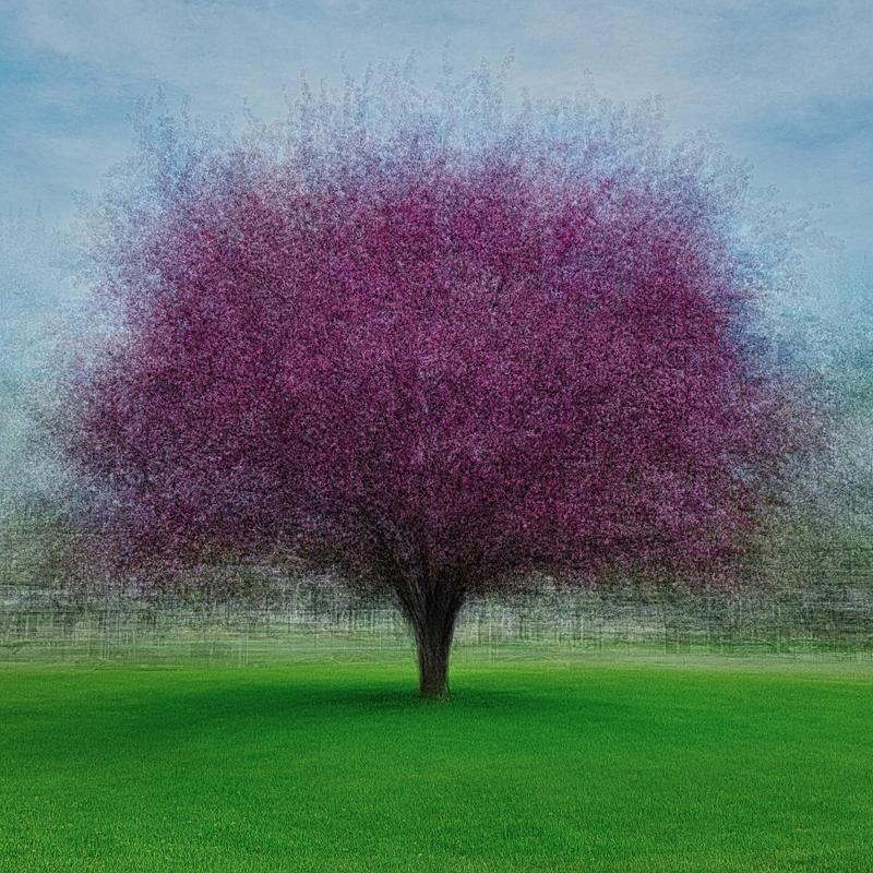 Blended composite of 25 photographs, each taken from a different angle or distance, of the same tree with vibrant purple blooms in the middle of a grassy field beneath a soft blue spring sky.