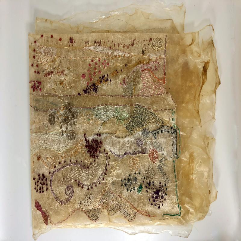 Silk thread stitched on a substrate that I created from animal membrane (gut) and used dryer sheets; intuitively stiched on various days to represent my mood. First page of 4 pages.