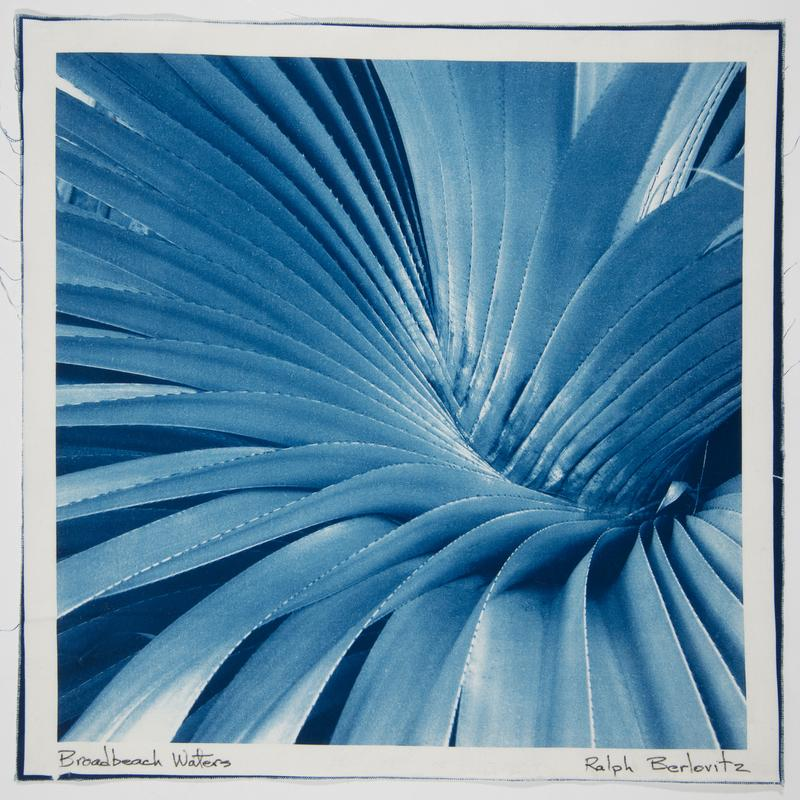 A blue and white photographic print (cyanotype) printed on soft cotton fabric revealing the texture of the fabric in the image.  It is a picture of the center of a tropical plant that grows in a spiral from the center out, one long pointed leaf with jagged edges over the previous.  The photo captures the energy of the plant as it grows in that spiral.
