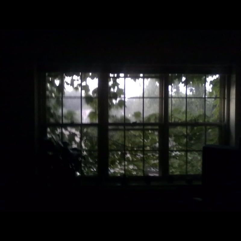 A photo captured inside of three connecting dark window panes surrounded by a large dark border. Through the window the viewer sees dark green vines on the window, with trees, fog, & an outline of a building in the background.