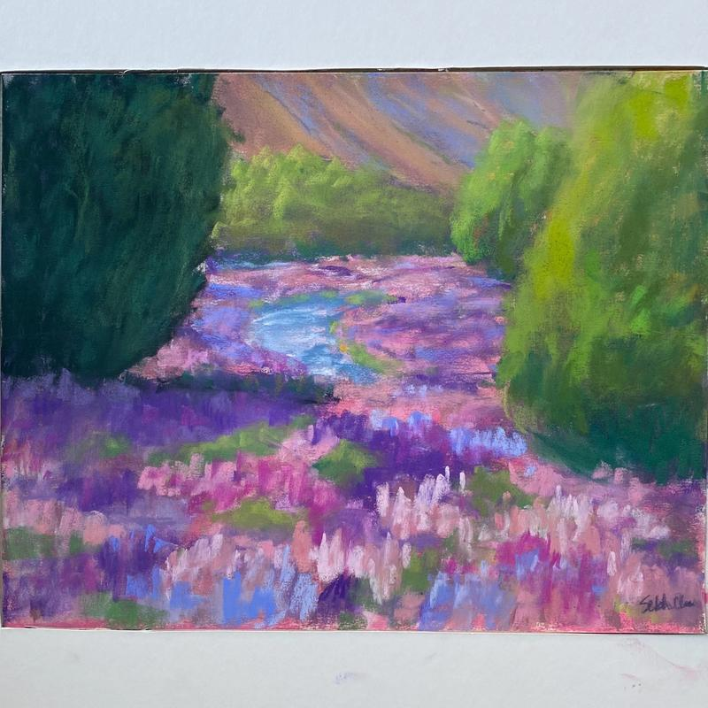 pastel drawing, a field of lupines of purple and pink hues. a clear blue river flows through the field and bushy trees dot the field on each side along the orange sand hill in the background.