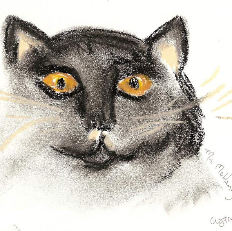 A oil pastel sketch of tuxedo cat with long whiskers and intense yellow eyes focused on the viewer.