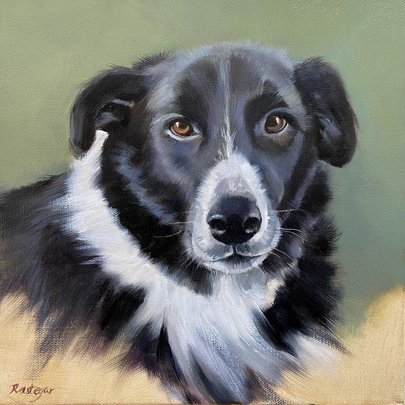 This is the portrait of a sweet dog, named Cooper.